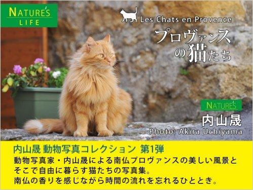 プロヴァンスの猫たち 〜南フランスの街並みとネコの写真集〜