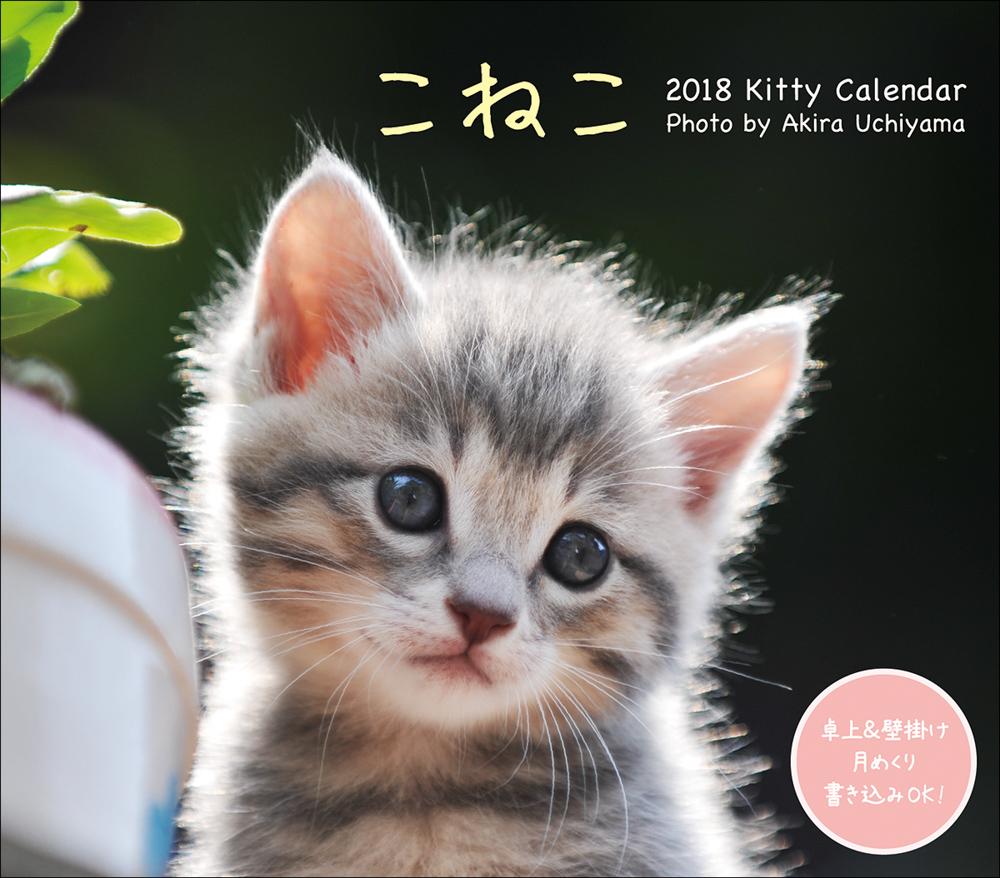 2018 ミニカレンダー こねこ