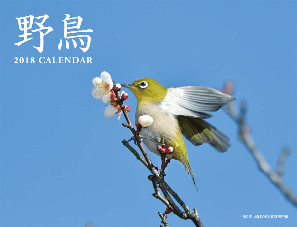 2018 野鳥カレンダー